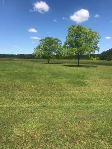 Lot 41 Fernwood Court, Bath, NC 27808 (MLS #100165728) :: Lynda Haraway Group Real Estate
