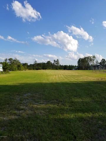 1409 Green Hill Road NE, Leland, NC 28451 (MLS #100165878) :: Coldwell Banker Sea Coast Advantage
