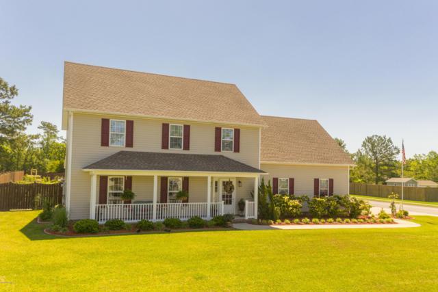 120 Cormorant Drive, Swansboro, NC 28584 (MLS #100165988) :: RE/MAX Elite Realty Group