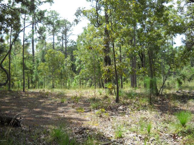 72 Greensboro Road, Boiling Spring Lakes, NC 28461 (MLS #100166087) :: Lynda Haraway Group Real Estate