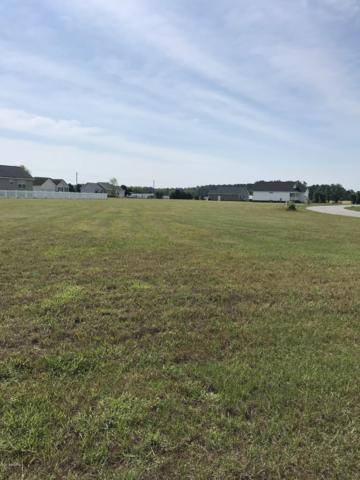 Lot 101 Mallison Place, Washington, NC 27889 (MLS #100166170) :: The Keith Beatty Team