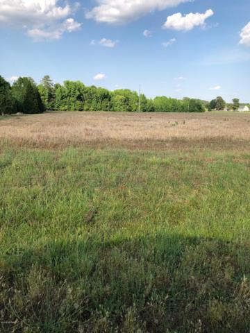 60 Tar Island Drive, Rocky Mount, NC 27803 (MLS #100166270) :: Lynda Haraway Group Real Estate