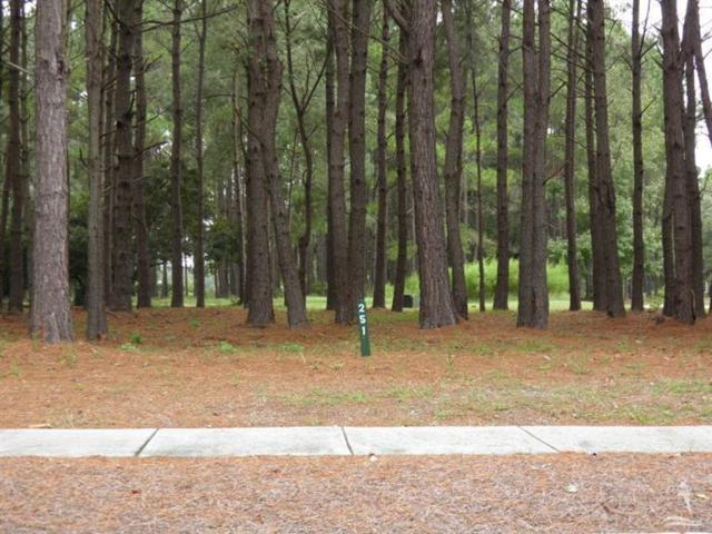 9290 W Lake Road SW, Calabash, NC 28467 (MLS #100166283) :: Lynda Haraway Group Real Estate