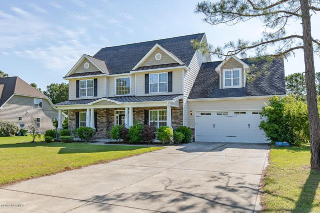 151 Snow Goose Lane, Sneads Ferry, NC 28460 (MLS #100166307) :: RE/MAX Elite Realty Group