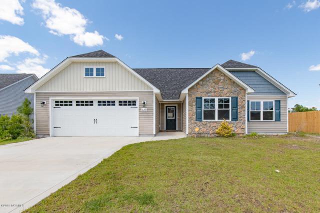 223 Breakwater Drive, Sneads Ferry, NC 28460 (MLS #100166330) :: Lynda Haraway Group Real Estate