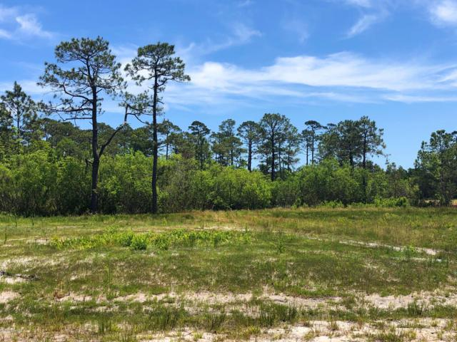 4429 Devonswood Drive, Southport, NC 28461 (MLS #100166414) :: Vance Young and Associates