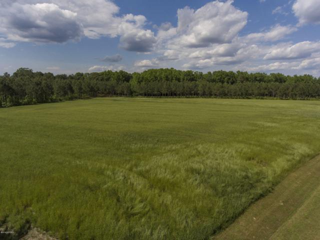 1240 Maple Swamp Road, Tarboro, NC 27886 (MLS #100166523) :: The Keith Beatty Team