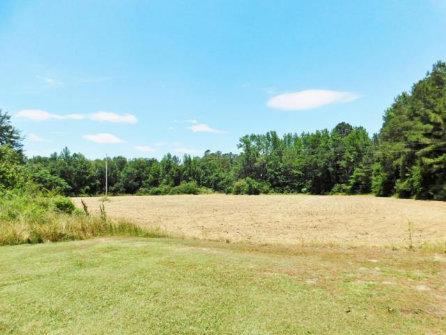 Lot 1 Plant Road, Laurinburg, NC 28352 (MLS #100167111) :: David Cummings Real Estate Team