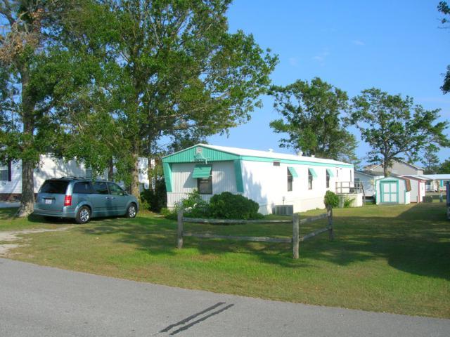111 Snow Goose Lane, Newport, NC 28570 (MLS #100167335) :: Donna & Team New Bern