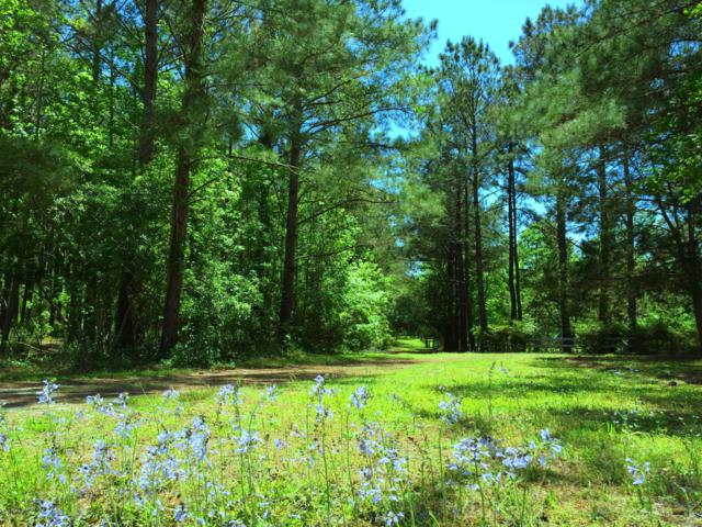 11.18 Ac Middle Dam Road SW, Shallotte, NC 28470 (MLS #100167528) :: Donna & Team New Bern