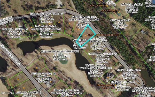 142 Sycamore Forest Drive, Wallace, NC 28466 (MLS #100167677) :: Donna & Team New Bern