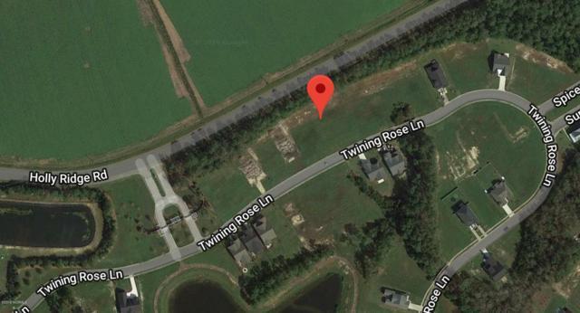 173 Twining Rose Lane, Holly Ridge, NC 28445 (MLS #100167760) :: The Keith Beatty Team