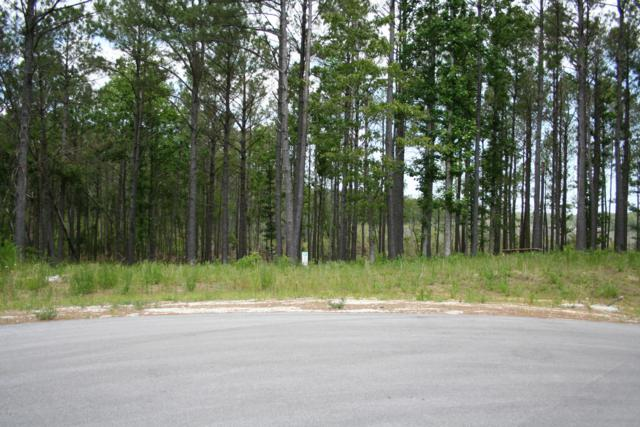 263 Gus Horne Road, Holly Ridge, NC 28445 (MLS #100167824) :: RE/MAX Elite Realty Group