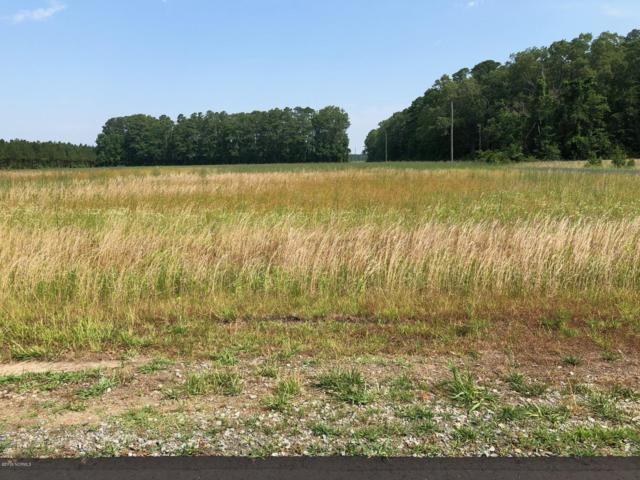 Lot 4 Southwinds Lane, Bath, NC 27808 (MLS #100168367) :: RE/MAX Essential