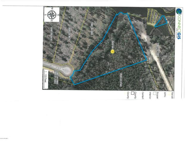 Lot 96 Bailey Pointe Drive, Belhaven, NC 27810 (MLS #100168798) :: Vance Young and Associates