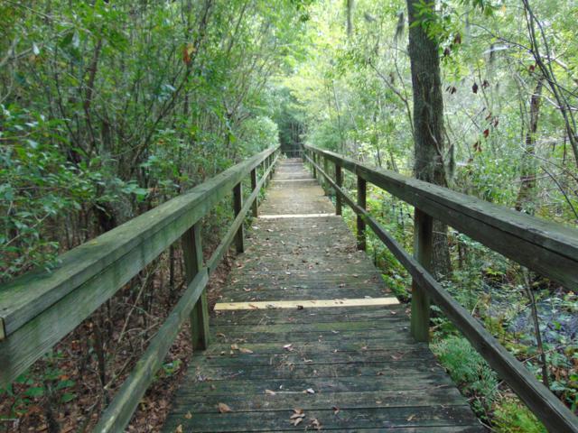 32 Eagle View Lane, Blounts Creek, NC 27814 (MLS #100168888) :: Lynda Haraway Group Real Estate