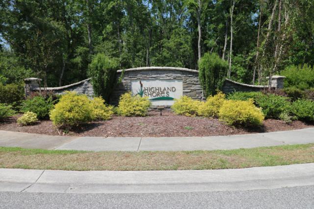 10249 Mariners Cove Court, Leland, NC 28451 (MLS #100170242) :: The Cheek Team