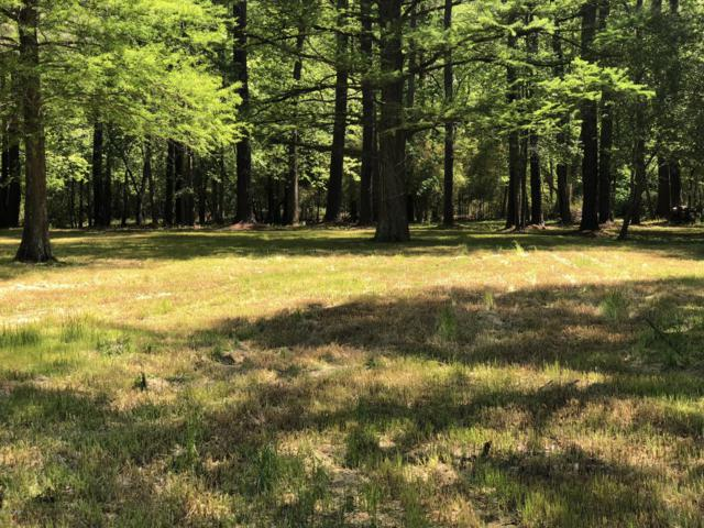 Lot 9 Wood Duck Drive, Washington, NC 27889 (MLS #100170282) :: Berkshire Hathaway HomeServices Prime Properties