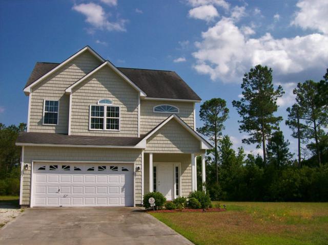 114 Sunny Point Drive, Richlands, NC 28574 (MLS #100170348) :: Century 21 Sweyer & Associates