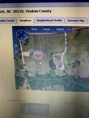 000 Great Neck Landing Road, Hubert, NC 28539 (MLS #100170412) :: CENTURY 21 Sweyer & Associates