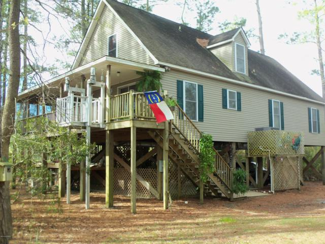 124 Schooner Point, Belhaven, NC 27810 (MLS #100170460) :: Berkshire Hathaway HomeServices Prime Properties