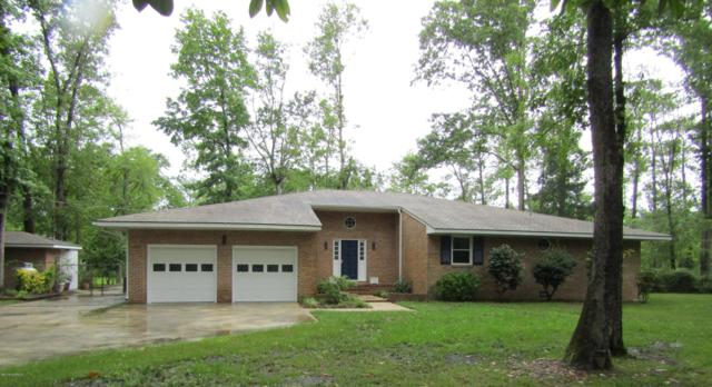 107 Pineview Drive, Oriental, NC 28571 (MLS #100170626) :: RE/MAX Essential