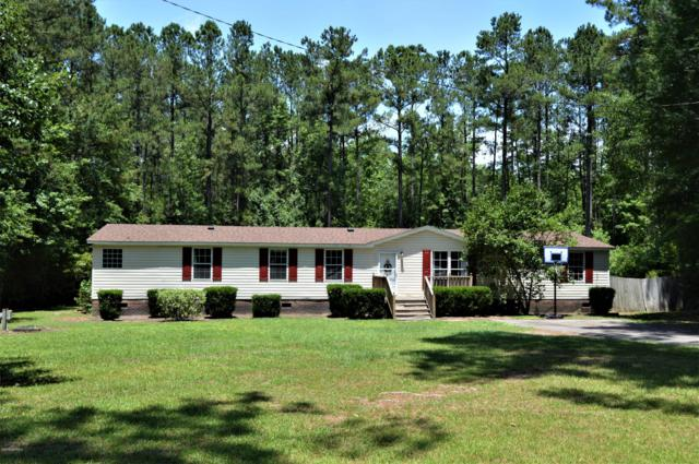 808 Rivenbark Road, Currie, NC 28435 (MLS #100170779) :: The Bob Williams Team