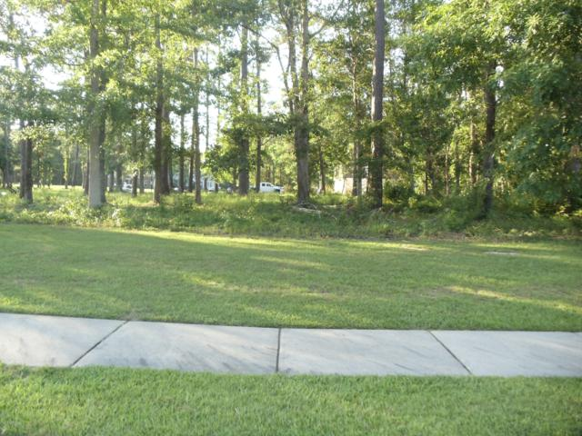 404 Salt Creek Road, Swansboro, NC 28584 (MLS #100171040) :: Donna & Team New Bern