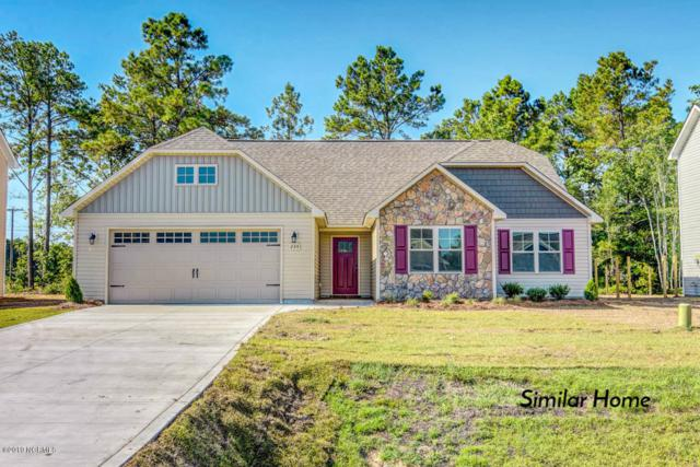 102 Sonia Drive, Hubert, NC 28539 (MLS #100171051) :: Courtney Carter Homes