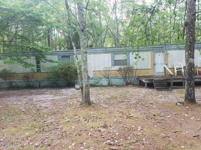 177 Saddle Ridge Road, Currie, NC 28435 (MLS #100171267) :: The Bob Williams Team