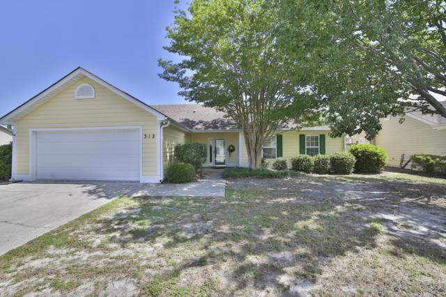 312 Endicott Court, Wilmington, NC 28411 (MLS #100171520) :: The Oceanaire Realty