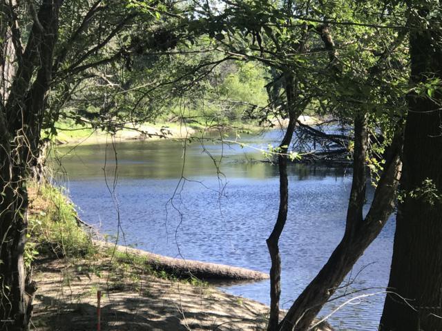 00 W Marney Drive, Willard, NC 28478 (MLS #100172018) :: Courtney Carter Homes