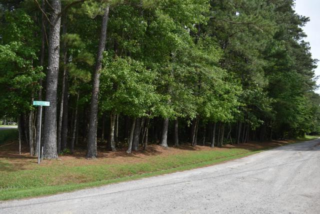 1045 Forest Drive, Williamston, NC 27892 (MLS #100172063) :: The Chris Luther Team