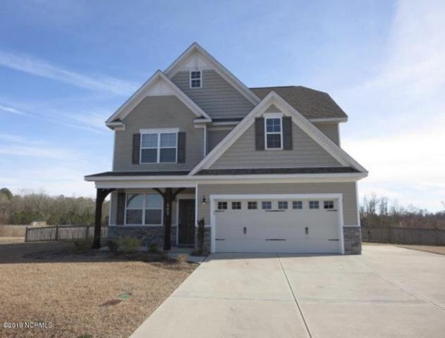 207 River Winding Road, Jacksonville, NC 28540 (MLS #100172304) :: Courtney Carter Homes