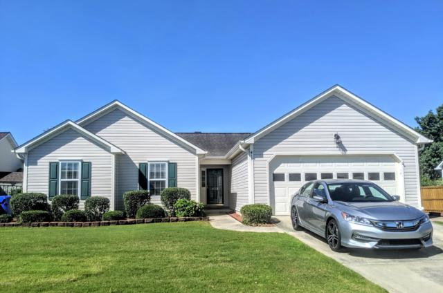 413 Point View Court, Wilmington, NC 28411 (MLS #100172361) :: The Keith Beatty Team