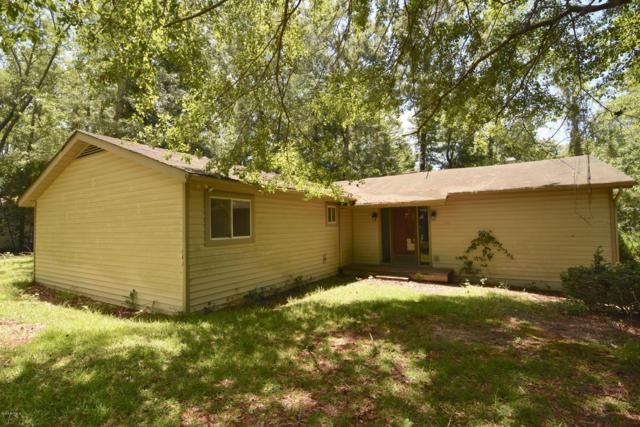 318 Shoreline Drive, New Bern, NC 28562 (MLS #100172456) :: The Keith Beatty Team