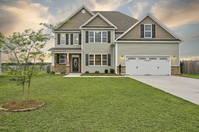 124 Saw Grass Drive, Maple Hill, NC 28454 (MLS #100172479) :: The Keith Beatty Team