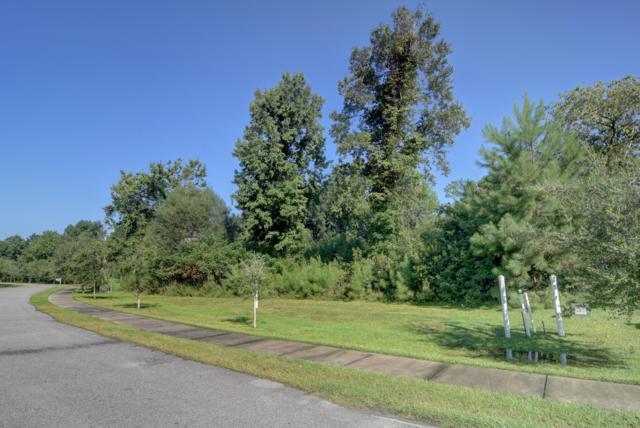 248 S Kingfisher Lane, Surf City, NC 28445 (MLS #100172543) :: Century 21 Sweyer & Associates