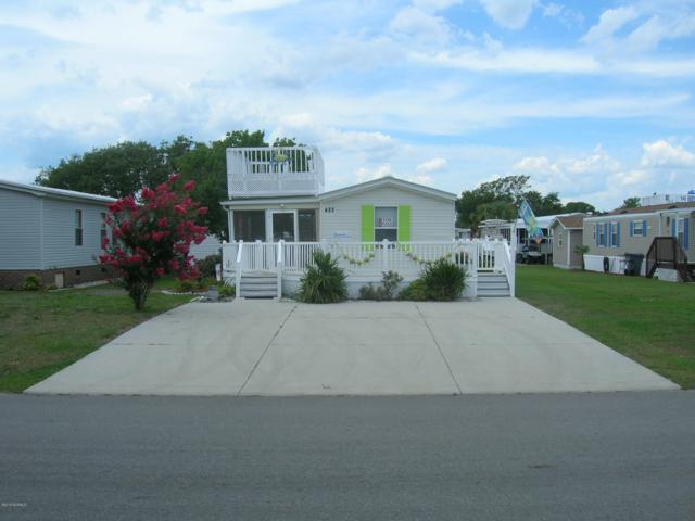 422 Blue Goose Lane, Newport, NC 28570 (MLS #100172675) :: David Cummings Real Estate Team