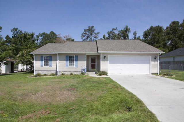 134 Plow Point Lane, Jacksonville, NC 28546 (MLS #100172709) :: Berkshire Hathaway HomeServices Hometown, REALTORS®