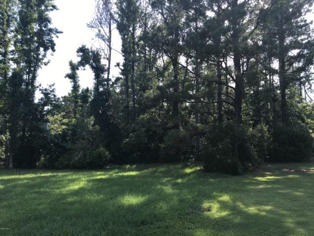 8705 Lake Nona Drive, Wilmington, NC 28411 (MLS #100173250) :: Vance Young and Associates