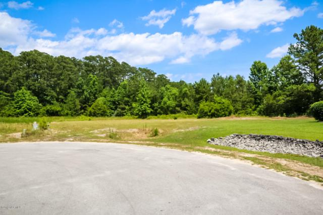 100 Backfield Drive, Newport, NC 28570 (MLS #100173473) :: Carolina Elite Properties LHR