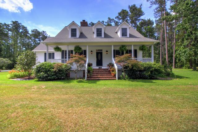 201 Jonaquins Drive, Beaufort, NC 28516 (MLS #100173538) :: The Cheek Team