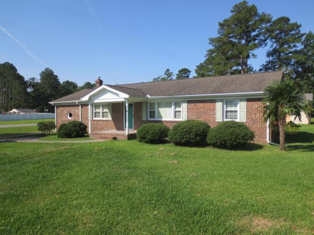 548 Hubs Rec Road, Belhaven, NC 27810 (MLS #100173694) :: Lynda Haraway Group Real Estate