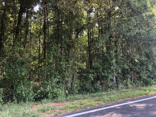 000 Deppe Loop Road, Maysville, NC 28555 (MLS #100173742) :: RE/MAX Elite Realty Group