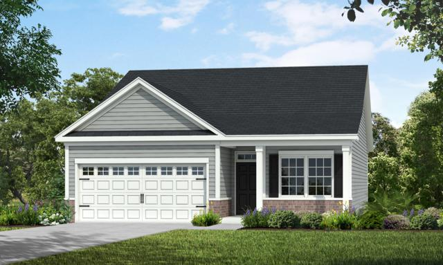 5049 W Chandler Heights Drive, Leland, NC 28451 (MLS #100173897) :: The Keith Beatty Team