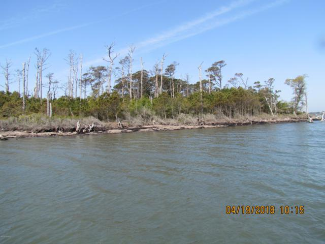 0000 Browns Island, Harkers Island, NC 28531 (MLS #100174474) :: Vance Young and Associates