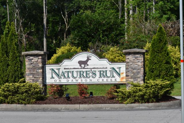 66 Natures Run Drive, Oriental, NC 28571 (MLS #100174490) :: Berkshire Hathaway HomeServices Hometown, REALTORS®