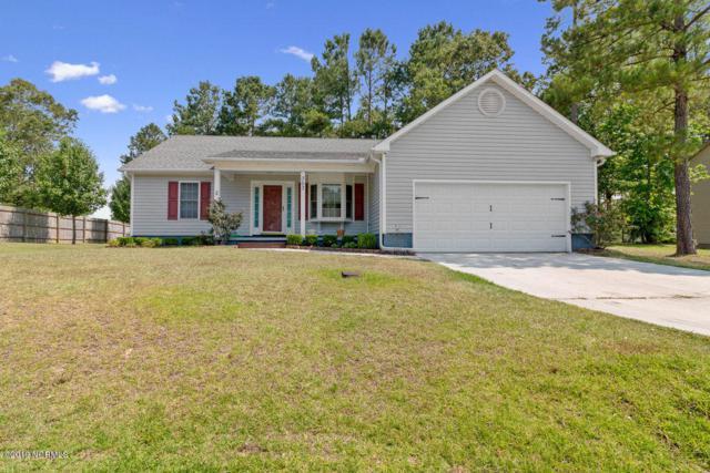 303 Foliage Court, Jacksonville, NC 28540 (MLS #100174533) :: Berkshire Hathaway HomeServices Hometown, REALTORS®