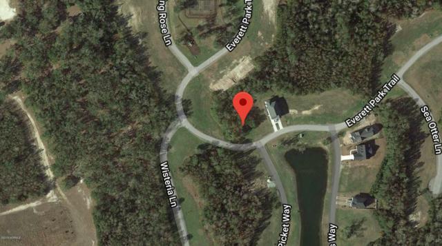 123 Everett Park Trail, Holly Ridge, NC 28445 (MLS #100174828) :: Lynda Haraway Group Real Estate